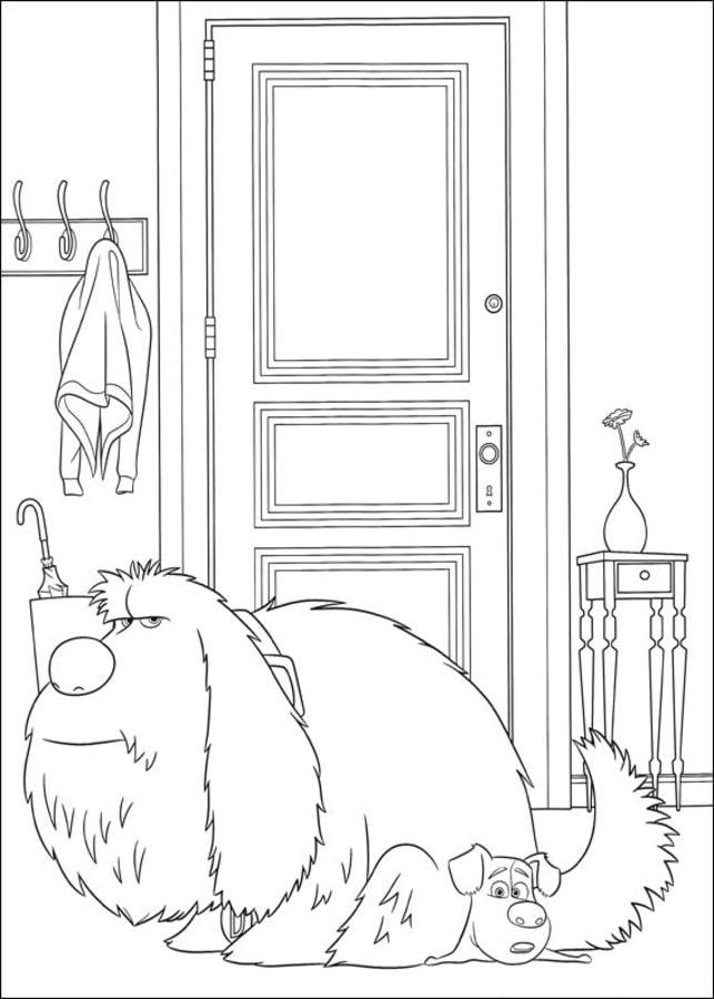 Dibujos Para Colorear La Vida Secreta De Tus Mascotas