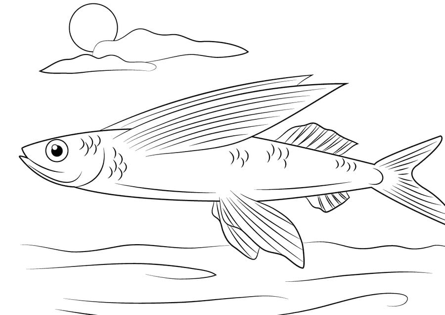 Coloring pages Flying fish printable