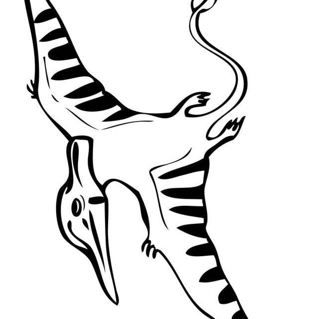 kleurplaat pteranodon