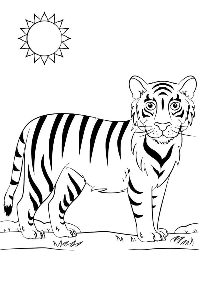 Erfreut Malvorlagen Von Tigern Galerie - Ideen färben - blsbooks.com