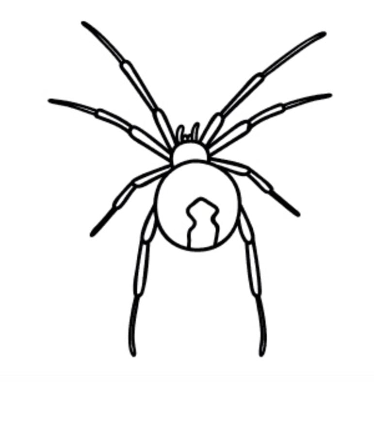 Coloring pages Black Widow printable