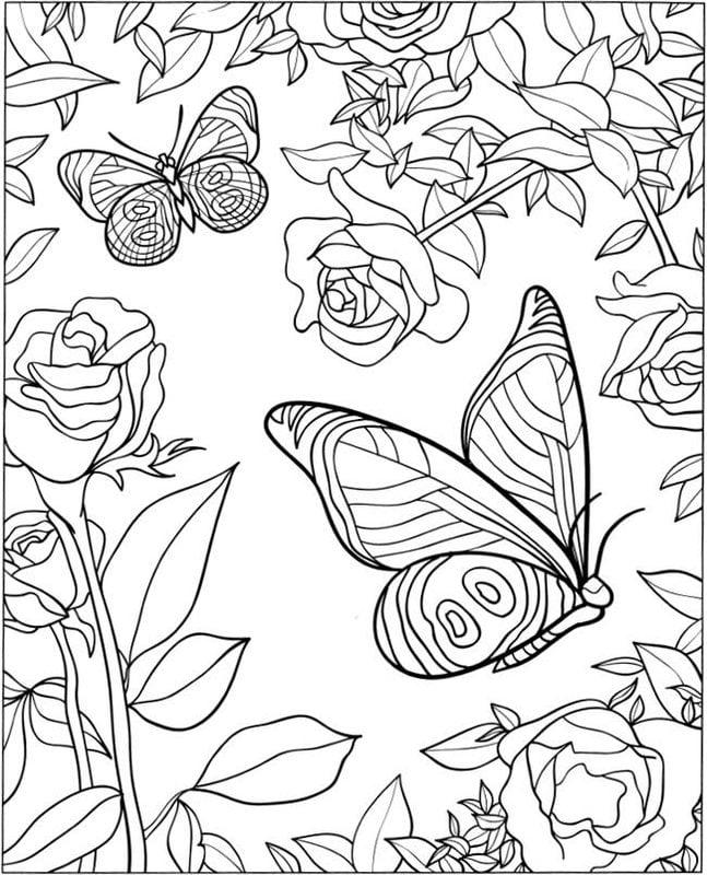 Kolorowanki Dla Dorosłych Motyle Do Druku Pobrania Za Darmo Jpg Pdf
