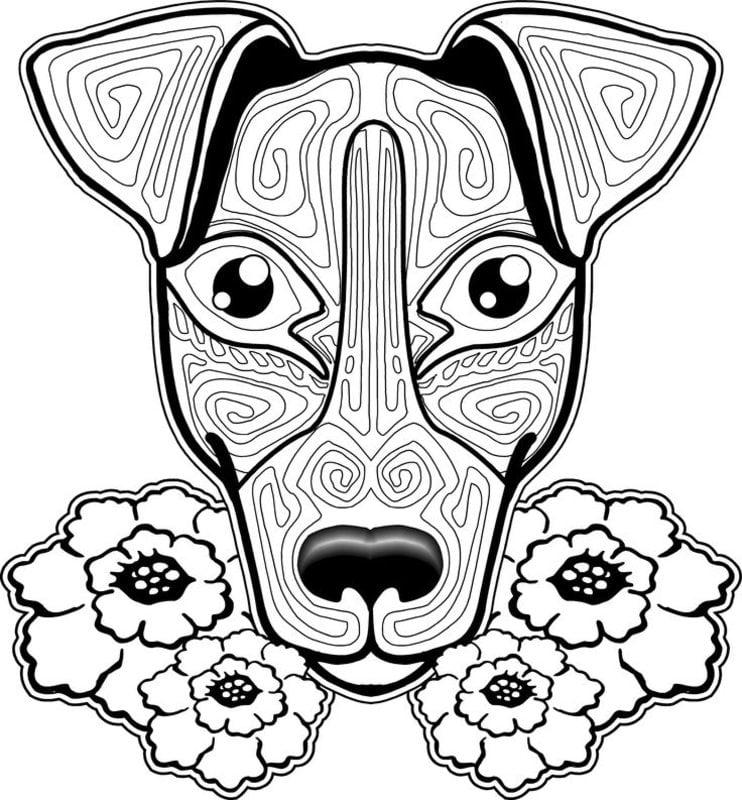 Kolorowanki Dla Dorosłych Pies Do Druku Pobrania Za