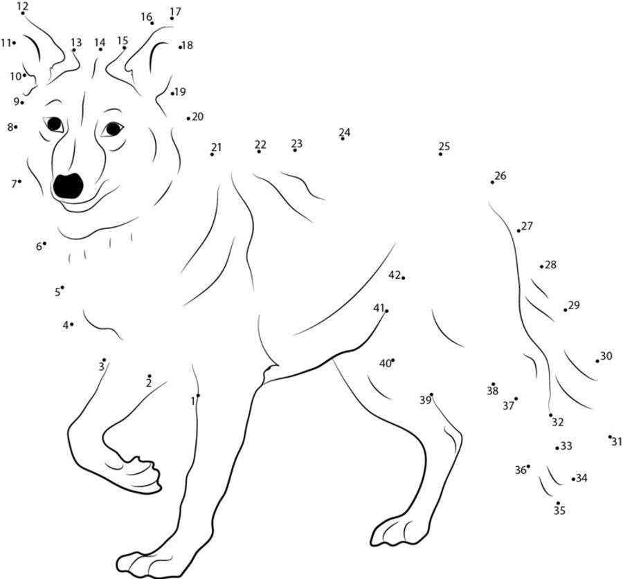 Moderno Coyote Para Colorear Imprimible Viñeta - Dibujos Para ...