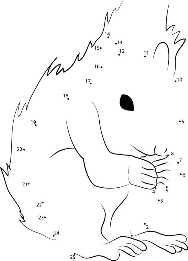 punkt zu punkt eichhörnchen zum ausdrucken kostenlos