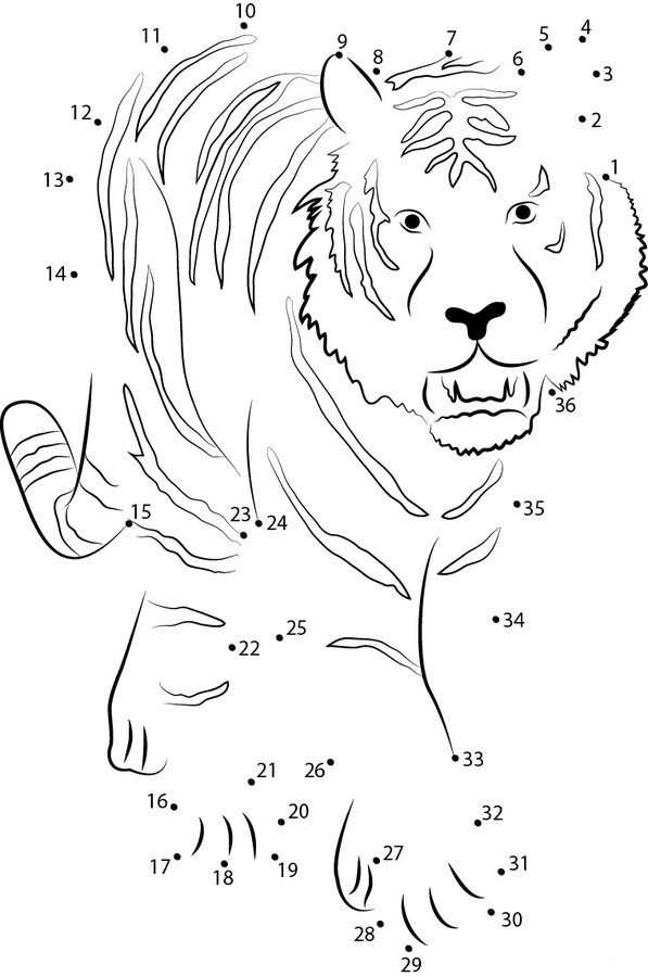Relier les points tigre imprimable gratuit pour les - Relier les points ...