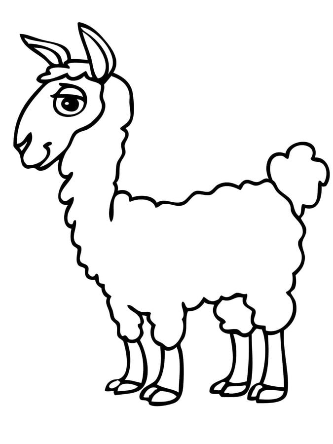 Kolorowanki Kolorowanki Alpaka