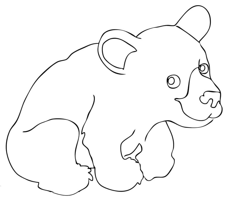 black bear coloring pages printable - photo#27