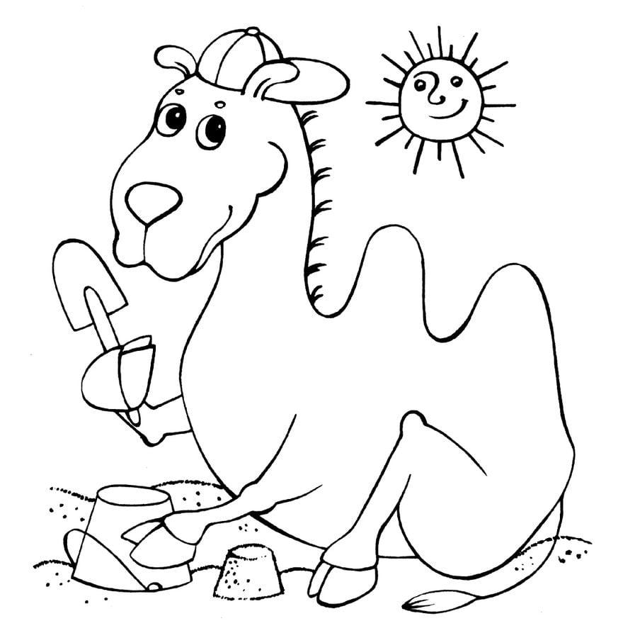 Dibujos para colorear: Camello imprimible, gratis, para los niños y ...