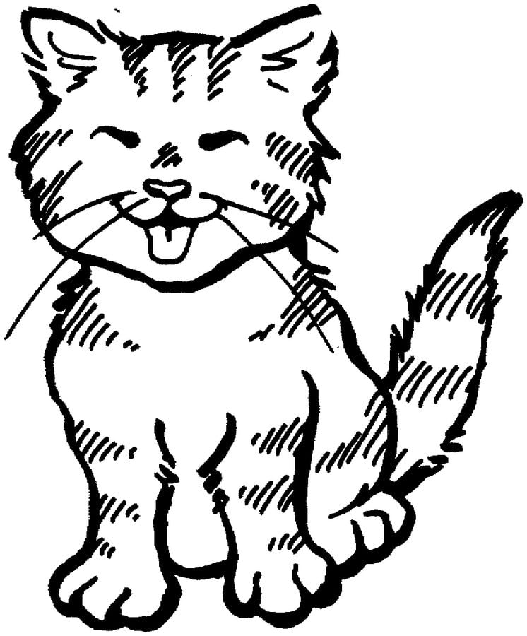 ausmalbilder katzen zum ausdrucken kostenlos für kinder