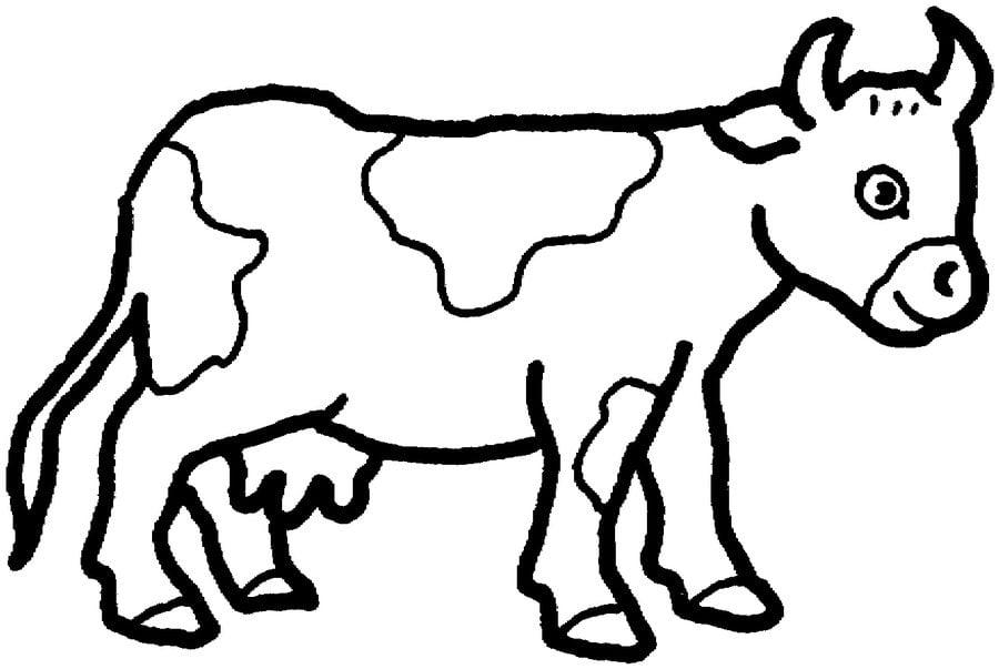 kolorowanki  krowa do druku dla dzieci i doros u0142ych