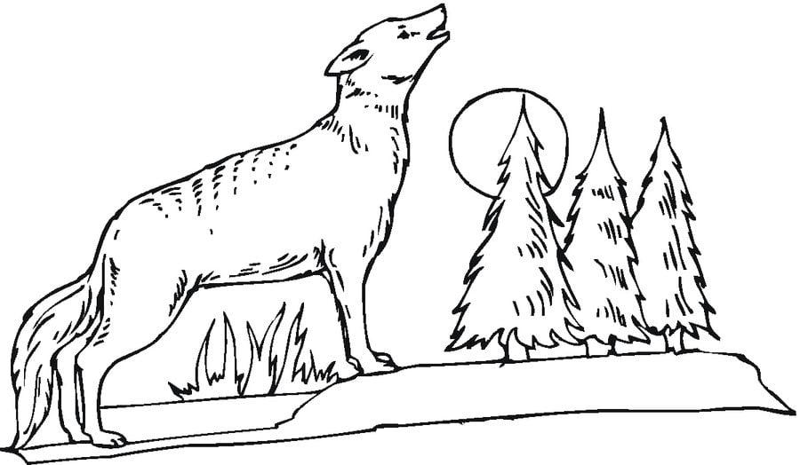 Gemütlich Heulende Kojote Malvorlagen Galerie ...