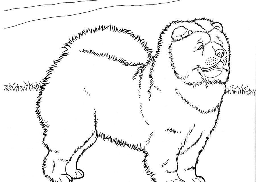 Disegni da colorare cani stampabile