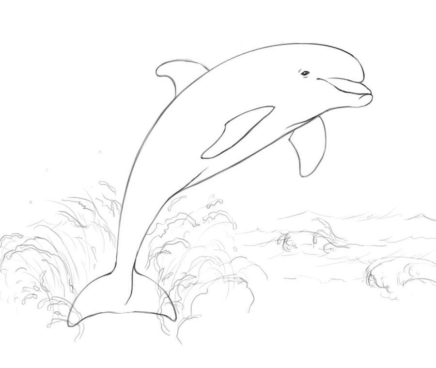 Ausmalbilder: Delfine zum ausdrucken, kostenlos, für ...