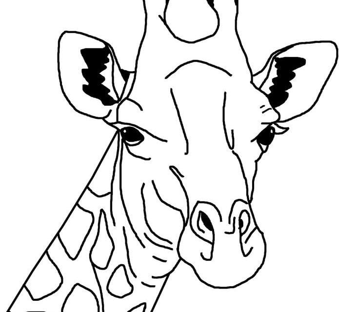 Più Ricercato Maschera Giraffa Da Colorare Disegni Da Colorare