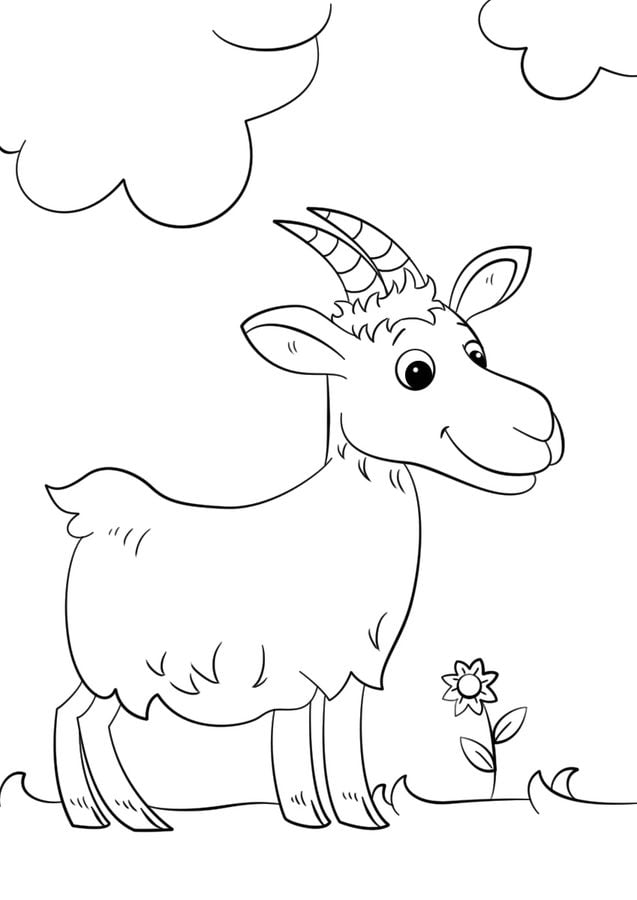Coloring Pages. Farm Animals. Cute Goat. Stock Vector ... | 900x637