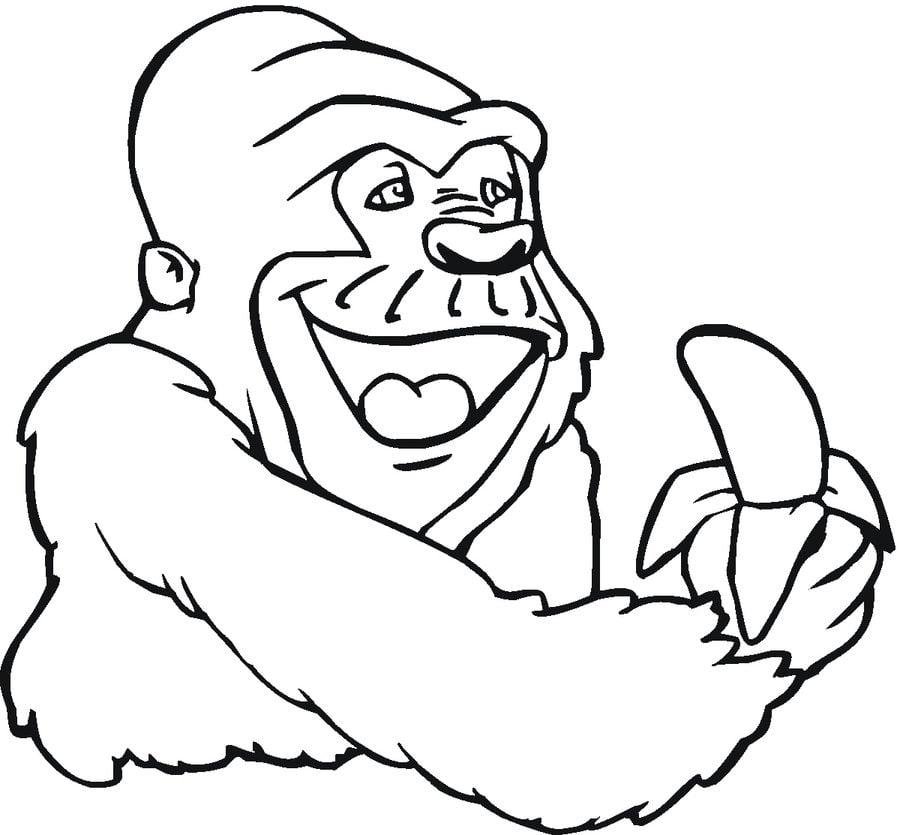 disegni da colorare disegni da colorare gorilla