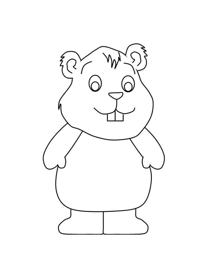 Encantador Marmotas Para Colorear Para Niños Modelo - Dibujos Para ...