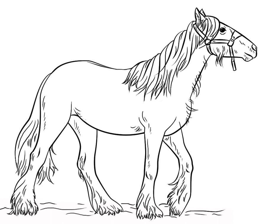 Kolorowanki Antystresowe Konie Do Druku