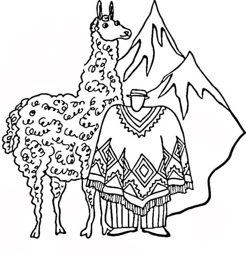 ausmalbilder ausmalbilder lama zum ausdrucken kostenlos