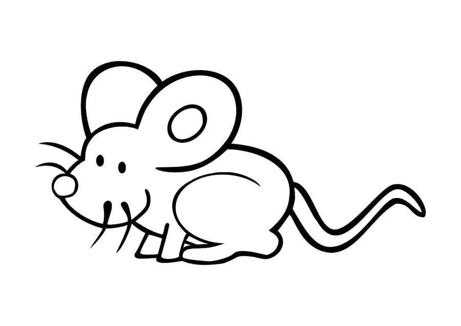 Disegni da colorare topi stampabile