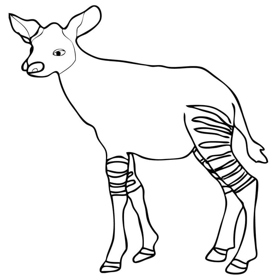 Dibujos para colorear: Okapi imprimible, gratis, para los niños y ...