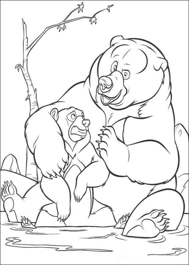 Disegni da colorare koda fratello orso stampabile
