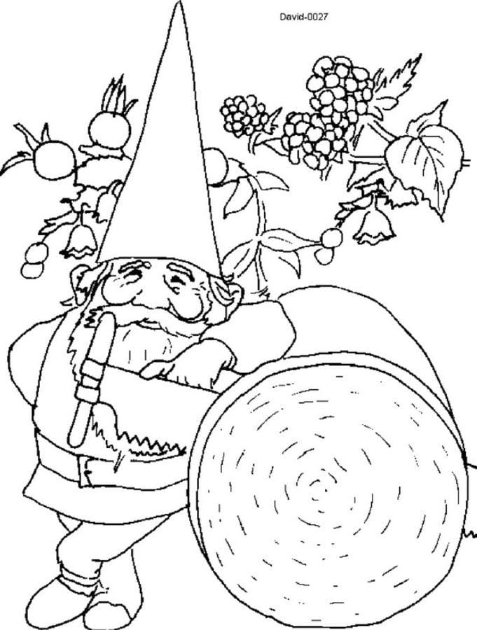 Dibujos Para Colorear David El Gnomo Imprimible Gratis