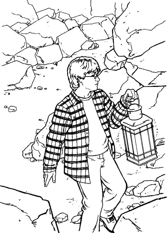 Coloring Pages Coloring Pages Harry Potter And The Chamber Of