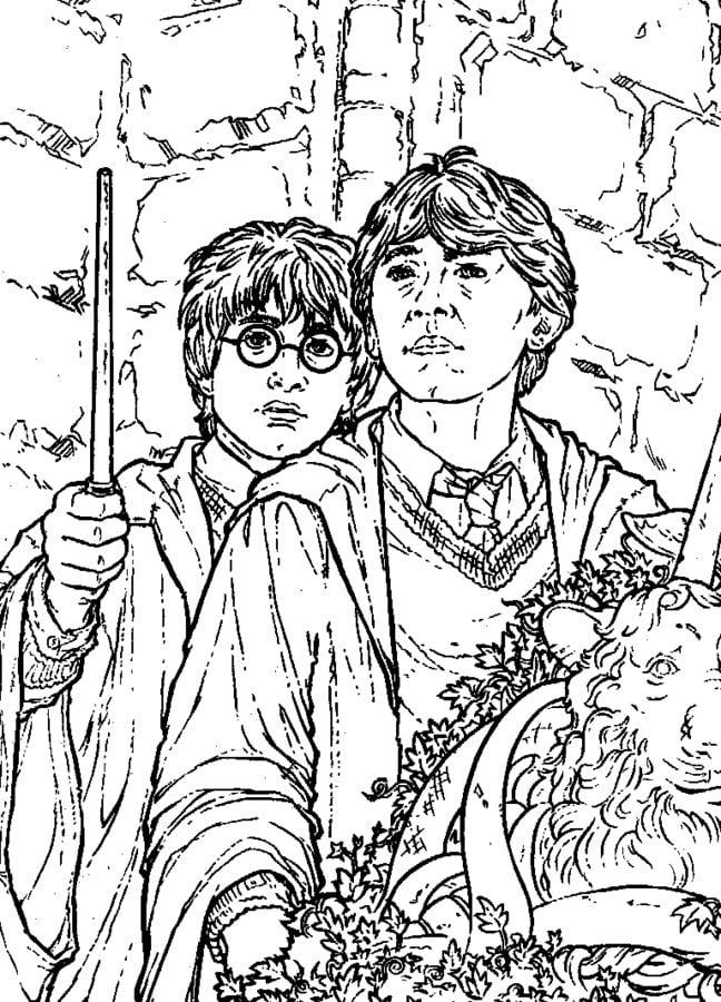 Dibujos Para Colorear De Harry Potter Y La Camara Secreta