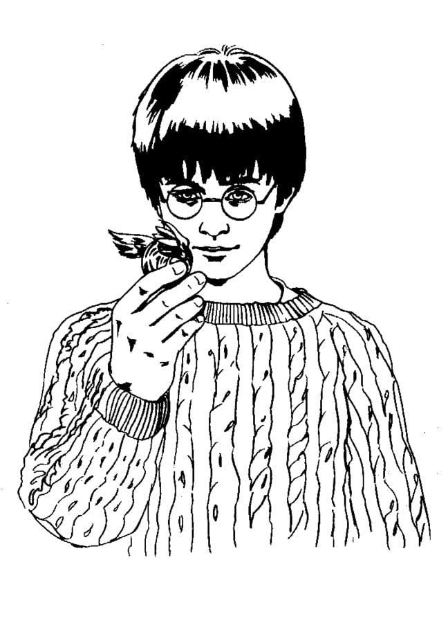 Harry Potter Stein Der Weisen Pdf