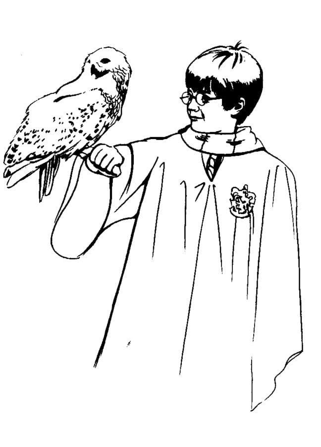 Dibujos para colorear: Harry Potter y la piedra filosofal imprimible ...