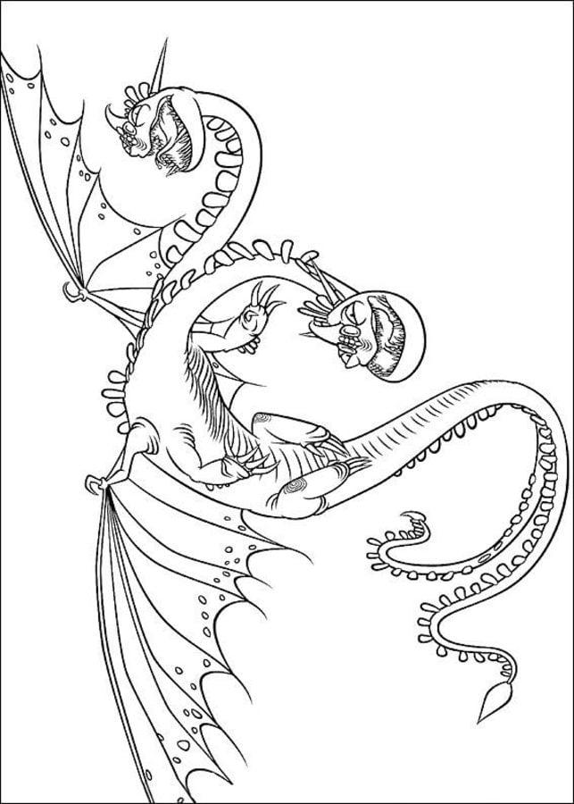 Disegni Da Colorare Disegni Da Colorare Dragon Trainer Stampabile