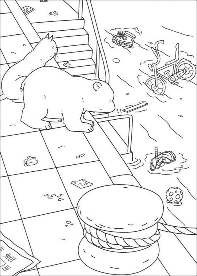 Ausmalbilder Ausmalbilder Der Kleine Eisbär Zum Ausdrucken