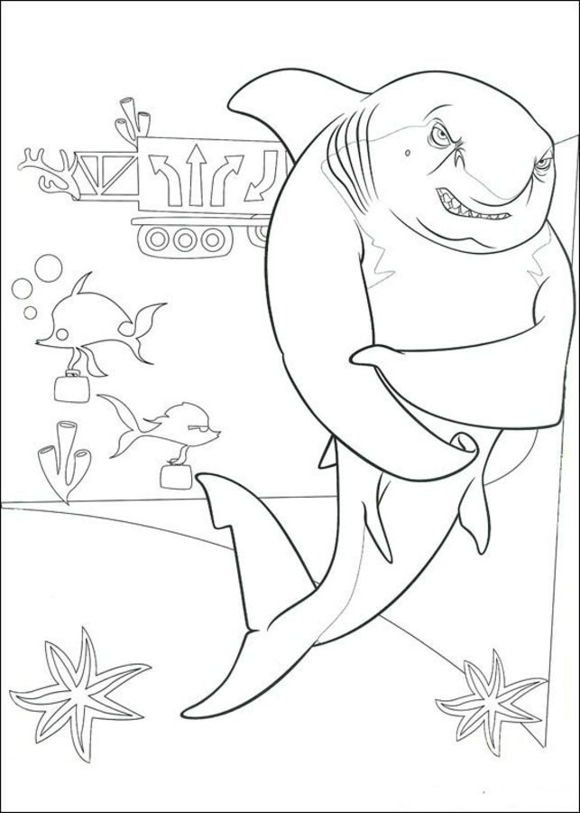 Free Printable Shark Coloring Pages For Kids | 900x643