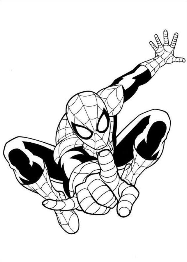 kolorowanki  spider