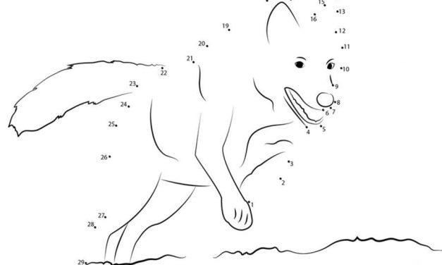 Unisci I Puntini Difficile: Punkt Zu Punkt Tiere Zum Ausdrucken, Kostenlos, Für Kinder