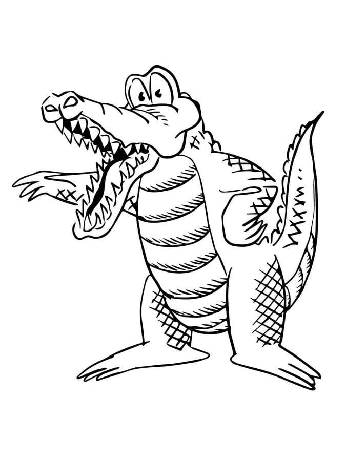 Ausmalbilder: Alligatoren zum ausdrucken, kostenlos, für Kinder und ...