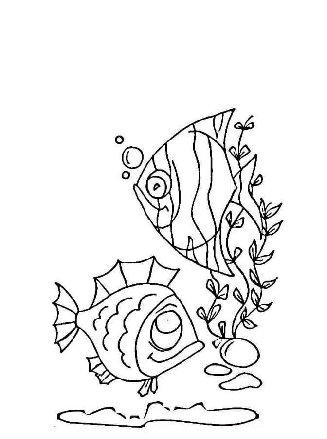 Disegni da colorare disegni da colorare pesce angelo for Disegni marini da colorare