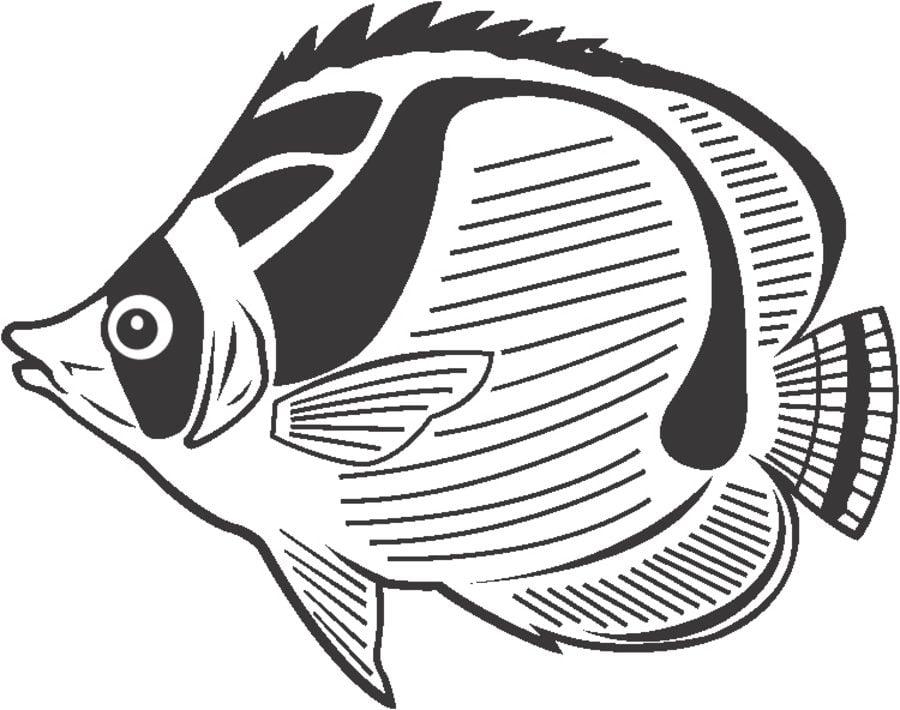 Disegni da colorare pesce angelo stampabile gratuito - Pagine da colorare pesci per adulti ...