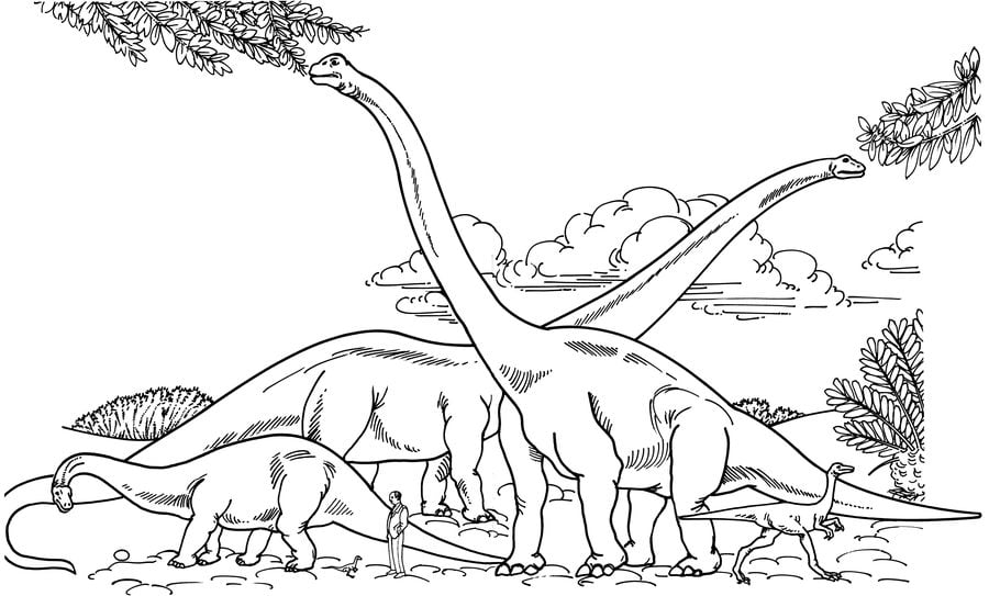 Ausmalbilder Ausmalbilder Brachiosaurus Zum Ausdrucken Kostenlos Fur Kinder Und Erwachsene