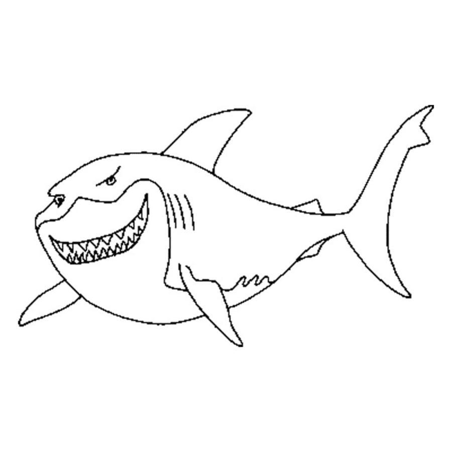Dibujos para colorear: Tiburones toro imprimible, gratis, para los ...