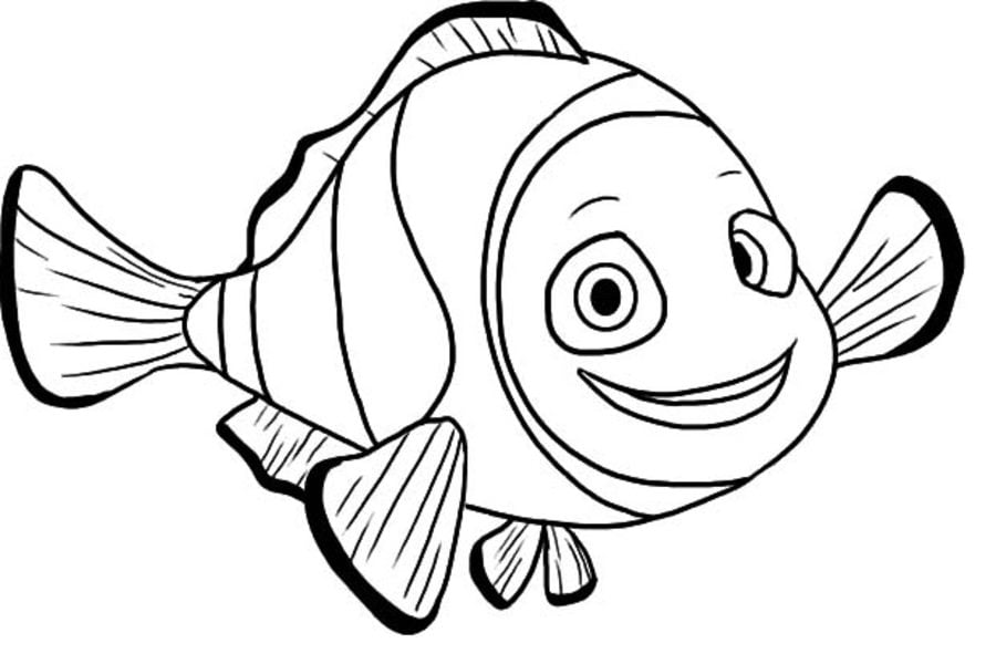 Marlin Is Finding Nemo Coloring Page Free Printable - 960×633