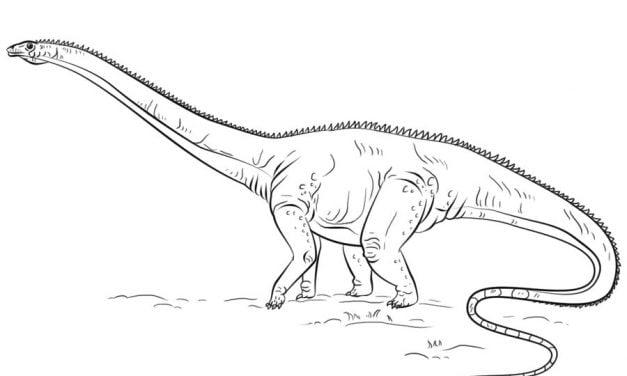 Ausmalbilder: Diplodocus