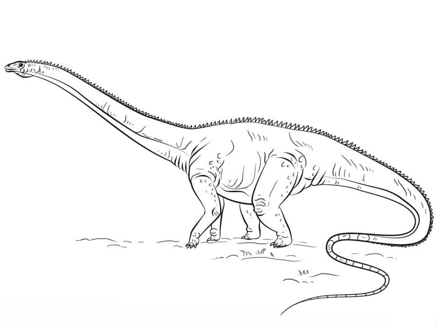 Disegni da colorare Diplodocus