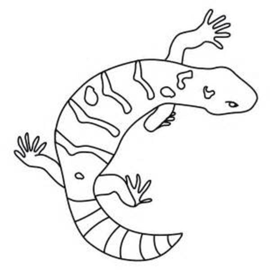 Dibujos para colorear: Monstruo de Gila imprimible, gratis, para los ...