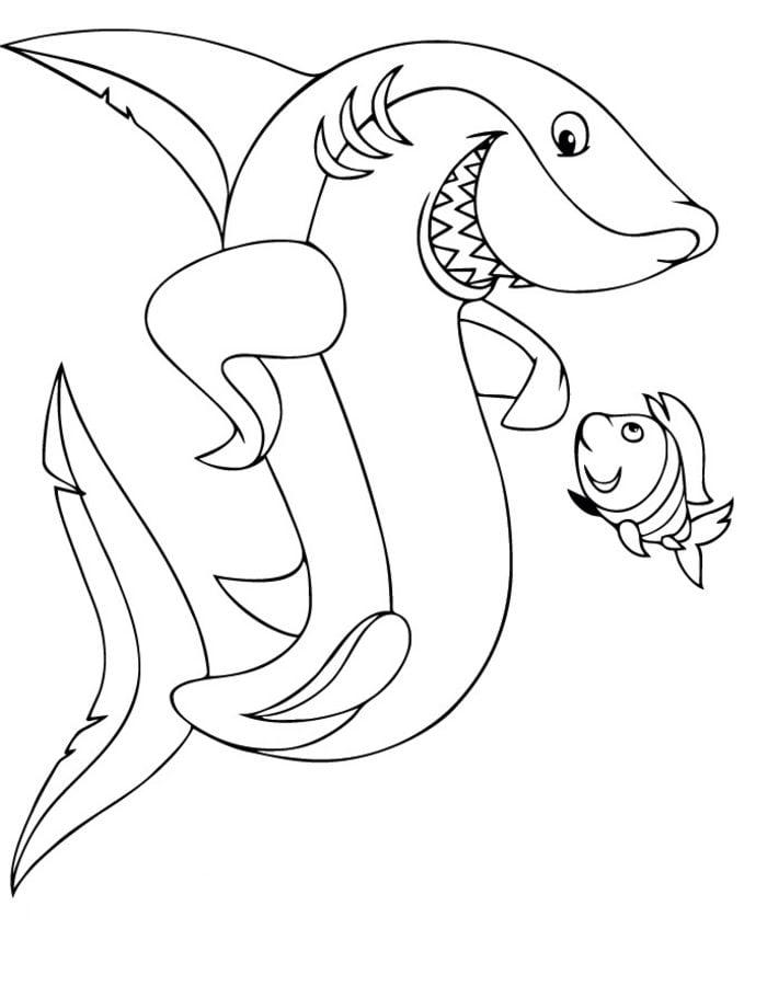Disegni da colorare disegni da colorare grande squalo for Disegno squalo bianco