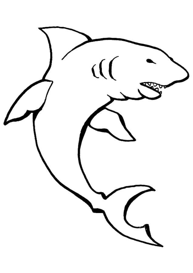 Dibujos para colorear: Tiburón limón imprimible, gratis, para los ...