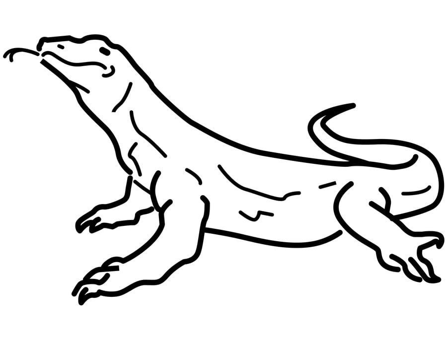 Coloring pages Monitor lizard printable for kids
