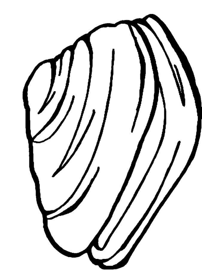 Ausmalbilder Ausmalbilder Miesmuschel